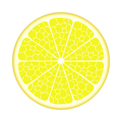 Lemon. Vector EPS10
