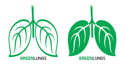 Leaves designed like human lungs, vector illustration