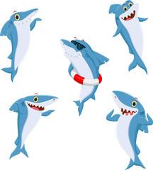 ciute shark cartoon collection
