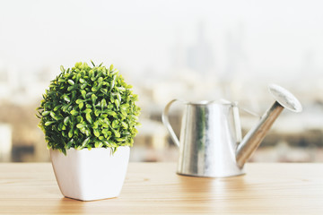 Plant and watering-can