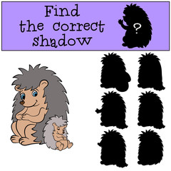 Children games: Find the correct shadow. Mother hedgegod sits with her little cute sleeping baby hedgehog.
