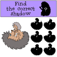 Children games: Find the correct shadow. Mother hedgehog plays with her little cute baby hedgehog.