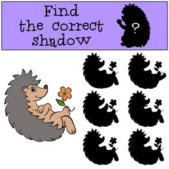 Children games: Find the correct shadow.Little cute hedgehog sits and holds a flower in the paw.