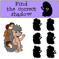 Children games: Find the correct shadow. Little cute hedgehog stands with mushrooms in his needles.