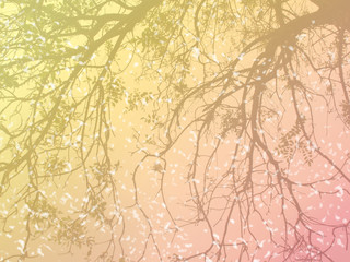 abstract background colorful branch of tree with colors filter