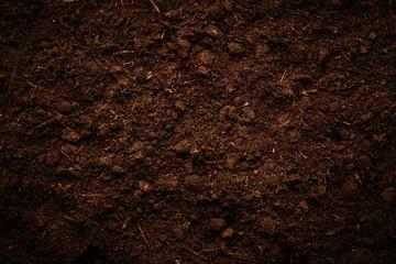 Soil texture Wall mural