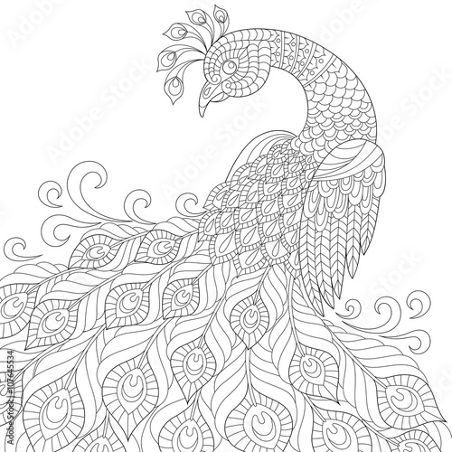 Decorative Peacock Adult Anti Stress Coloring Page