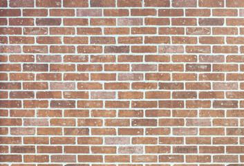 Light orange brick wall with copy space
