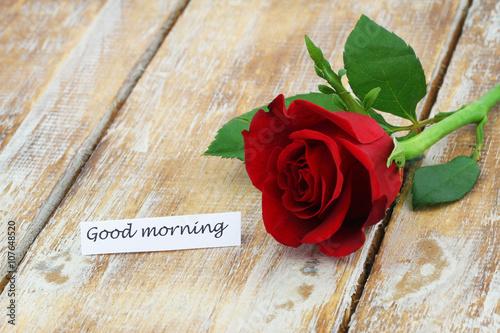 good morning red rose hd image download