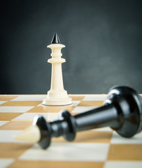 Kings on the chess board
