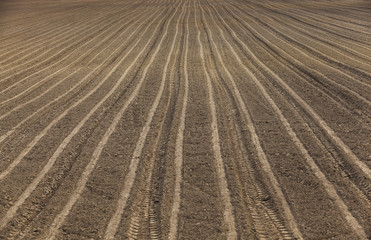 plowed agricultural land