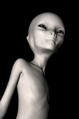 Alien - the grey- isolated on black background