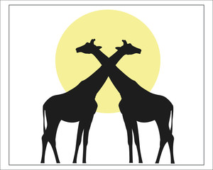 Giraffes black silhouette against the sun vector image.
