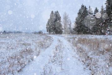landscape winter road