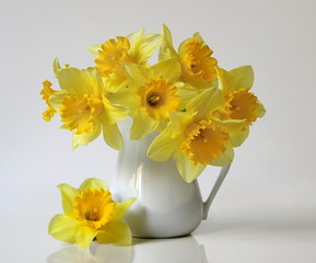 Bouquet of yellow daffodils flowers in a vase. Floral still life with bouquet of yellow narcissus flowers in a vase.