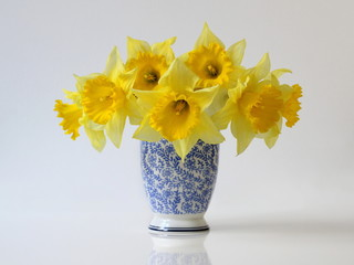 Bouquet of yellow daffodils flowers in a blue vase. Floral home decoration with bouquet of yellow narcissus flowers in a vase.