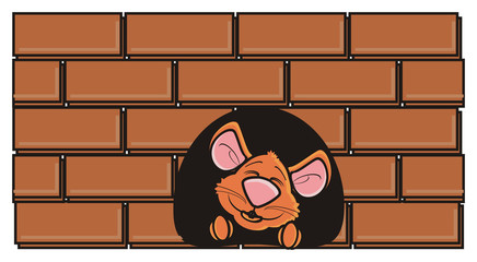 look out, hang around, head, face, muzzle, mouse, rat, rodent, pest, animal, isolated, toy, cartoon, brown, pet, wall, brick, building