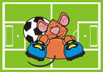 mouse, rat, rodent, pest, animal, isolated, toy, cartoon, brown, pet, lying,  game, sports, field, boots, grass, football, goal, ball, football, soccer, play