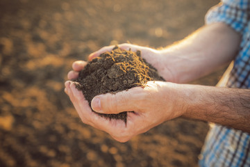 Farmer holding pile of arable soil in hands