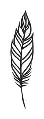 Rustic decorative black feather doodle vintage art graphic vector.