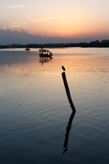A beautiful sunset at the Dal Lake, Srinagar, Jammu & Kashmir, India
