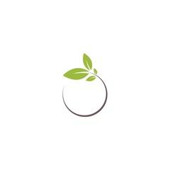 round tree leaf logo