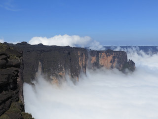 Roraima table mountain in Venezuela.