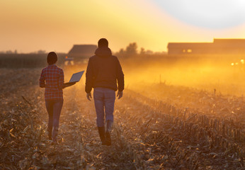 Farmers walking on field during baling Fototapete