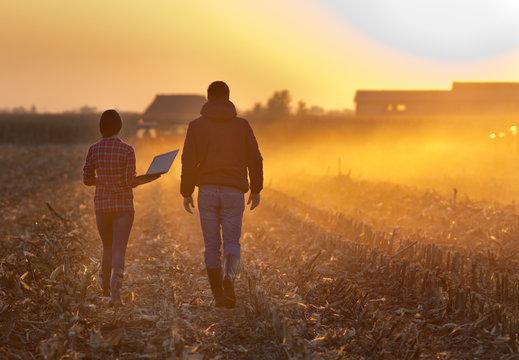 Farmers walking on field during baling