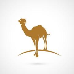 African camel symbol