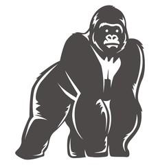 Fototapete - gorilla stand gray