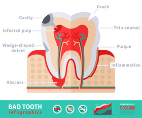 Bad tooth anatomy flat icon concept