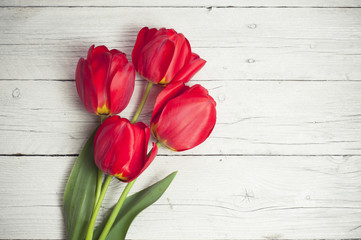 tulips in a vase on white background isolated