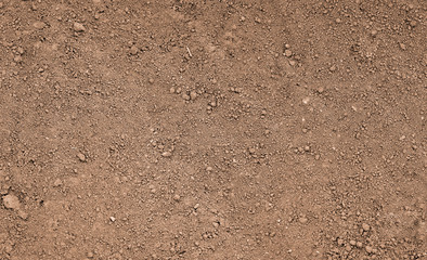 Brown ground surface. Close up natural background