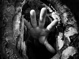 Hand in a Hollow