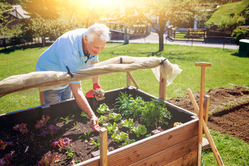 old man is working in his garden - gardening 20
