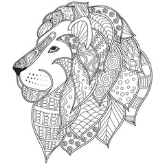 Hand drawn ornamental outline lion head illustration decorated with abstract doodles