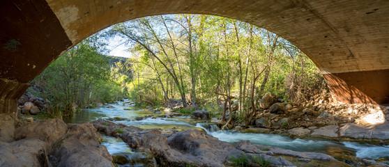 Fossil springs creek in Arizona