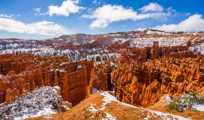 Deurstickers Canyon Colorful Bryce canyon national park, Utah