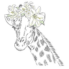 Giraffe in a wreath of flowers. Vector illustration. Print for clothes, posters or postcards.