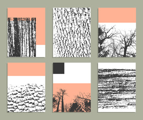 Creative trendy cards. Templates with texture of nature. Isolated
