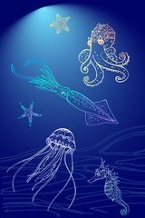Set of sea theme for your design: octopus, jellyfish, starfish, seahorse, squid/Hand drawn the inhabitants of the underwater world. Minimalist line drawing, sketch style
