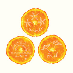 Vector watercolor orange slices and hand drawn doodle elements. Hand painted circles collection.
