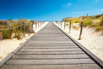 Wooden walkway leading to the beach