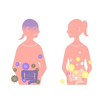 腸内フローラ 健康や体形にも影響 女性