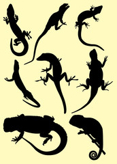 Lizards Silhouette