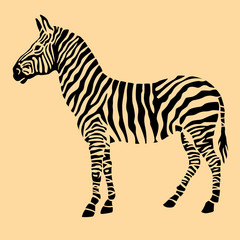 Zebra animal black silhouette
