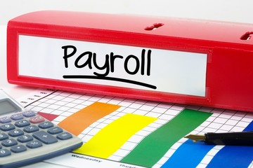 Composite image of word payroll underlined