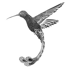 hummingbird, zentangle style. vector illustration