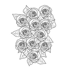 rose flower. Black and white graphics .vector illustration.black and white background. lush bouquet